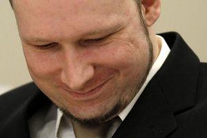 Anders breivik quiere crear un partido fascista el ni o de la sociedad - Fundar un partido politico ...