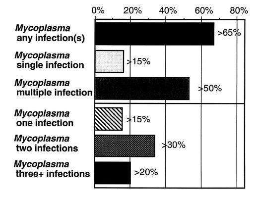 Figure2Nicolson - El micoplasma y las enfermedades crónicas