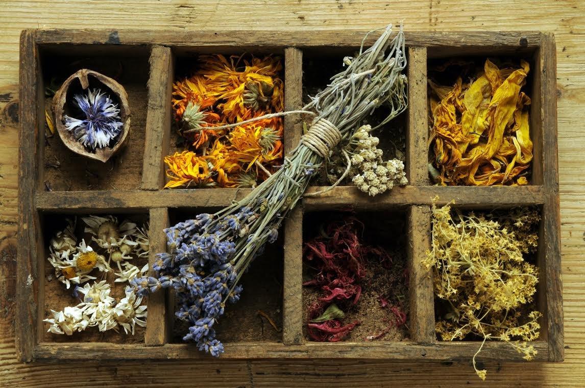 Crea tu propia herborister a en casa salud y bienestar - Crea tu propia casa ...