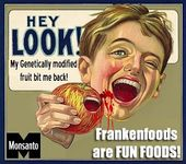 frankenfood monsanto