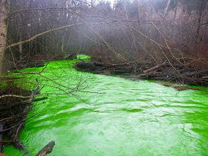 Increíble de creer, un río verde fosforecente