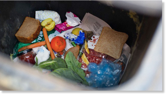 comida-desperdiciada