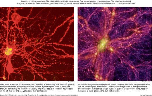 neurocósmico