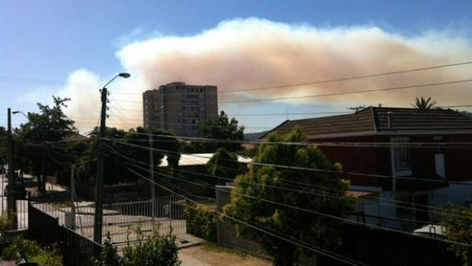 incendio forestal en Chile
