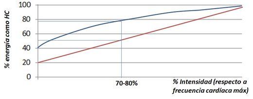 curva_HC_cetosis_ejercicios
