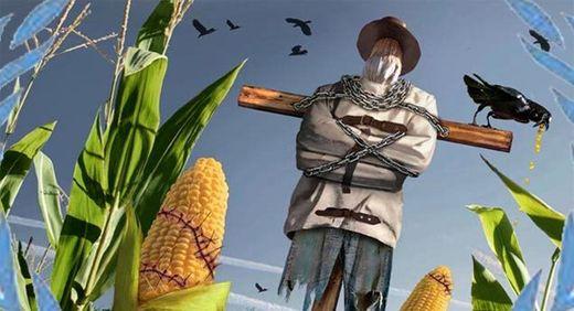Maíz de Monsanto