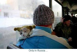 Only_in_Russia
