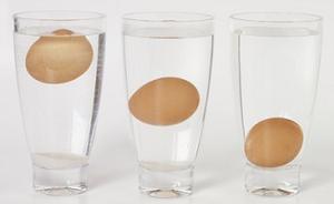 prueba_huevos_frescos