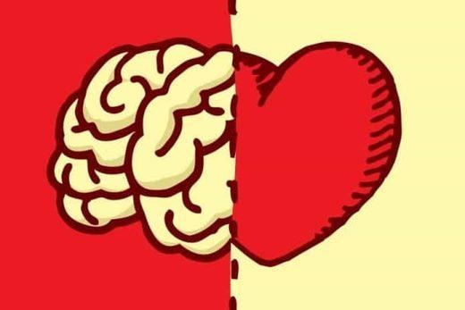 cerebro emociones