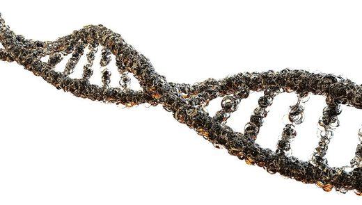 moléculas de ADN
