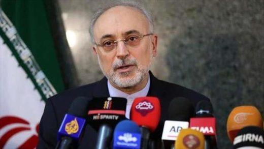 Ali Akbar Salehi Iran