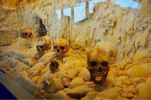 maya ancestros