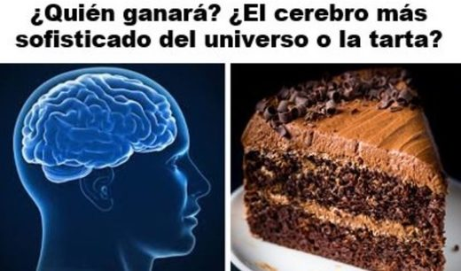 cerebro chocolate