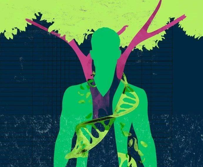 Trabajar En El árbol Genealógico Para Conocerse A Sí Mismo Sanar Y