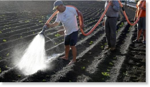 Farmers irrigating with water from a tank to alleviate the effects of the drought that affects the island this year, and because the irrigation water from Canal Gestión is not guaranteed to all areas of the island.