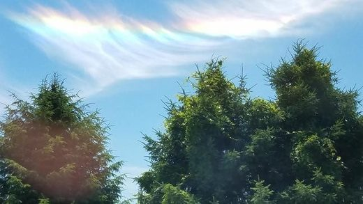 Circumhorizontal arc over VA