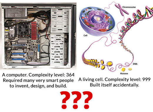 Computer Vs living cell