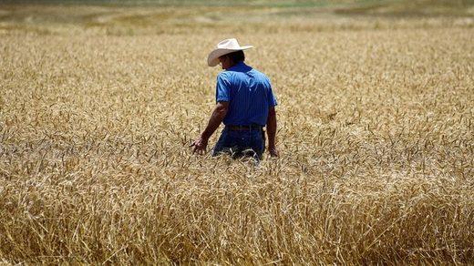 granjero Kenton Gossen