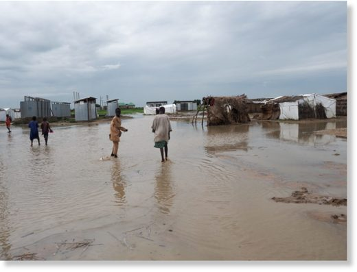 Flooding in Borno state, Nigeria, affected displacement camps, August 2019.
