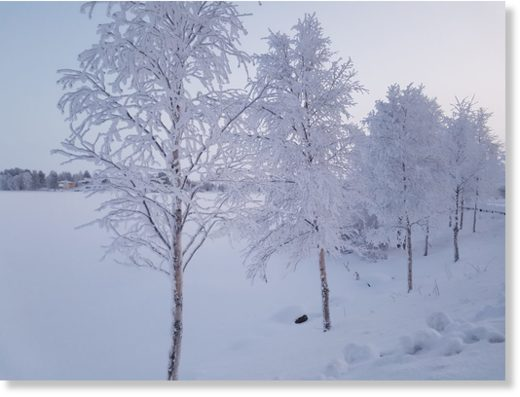 Extreme cold winter weather in Lapland