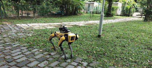 El robot que vigila parques en Singapur.