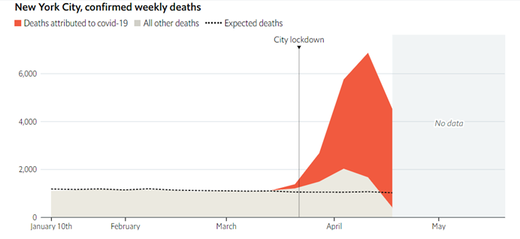new york city lockdown deaths