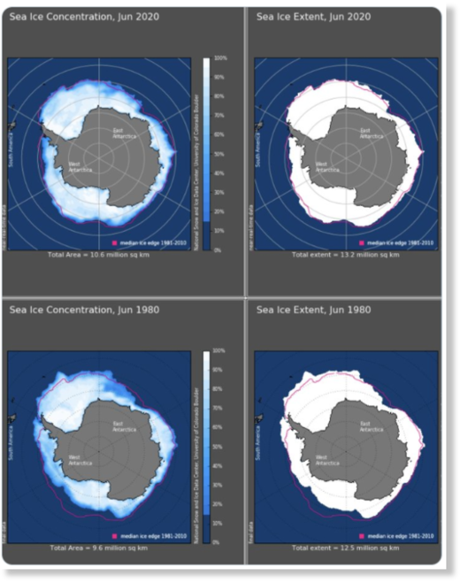 Larger concentration of sea ice in Antarctica in Jun 2020 than Jun 1980