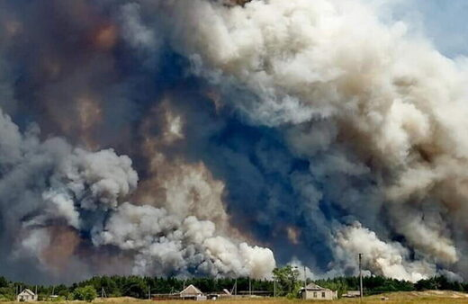 Ukraine wildfires