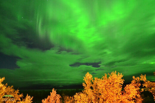 Green clouds captured on September 13, 2020 @ Abisko National Park, Sweden