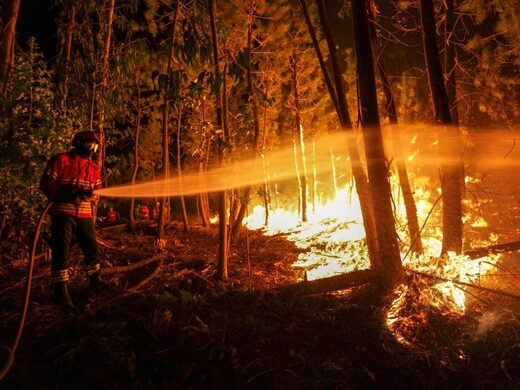 Almost 1,000 firefighters and 15 water-dropping aircraft battled a major wildfire in central Portugal on Monday, as strong winds pushed the flames through dense and hilly woodlands.