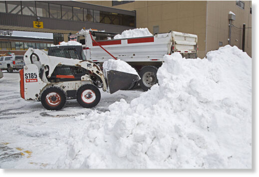 A bobcat is used to help clear snow in downtown