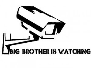 big brother gran hermano
