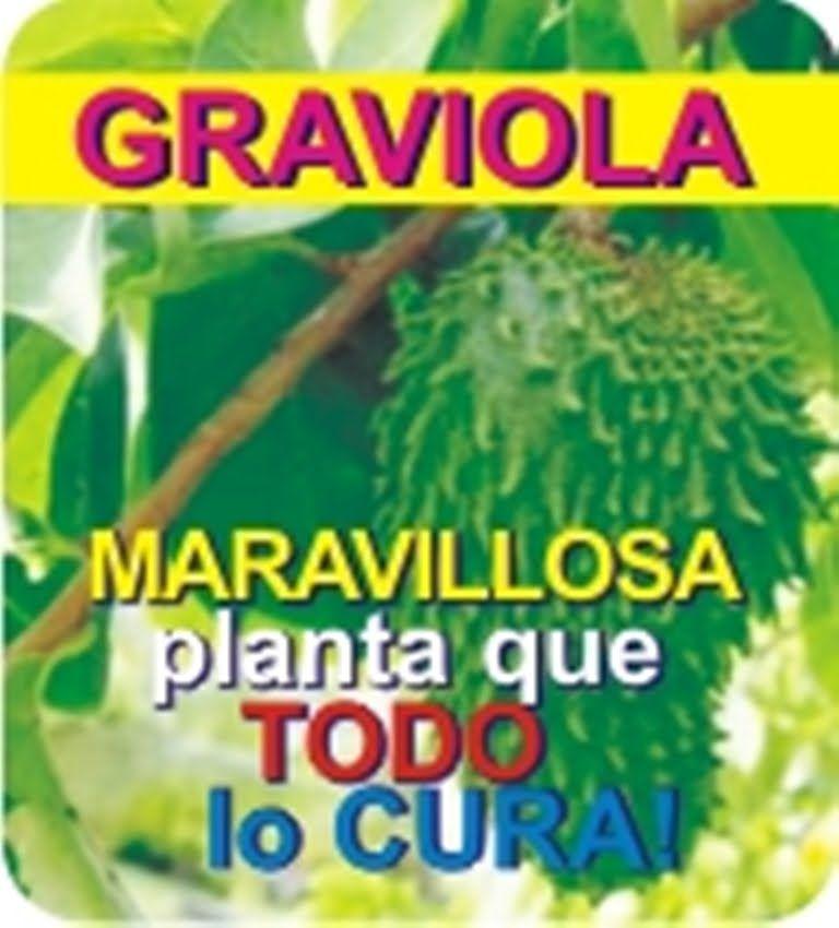 la guanabana es buena para el colon