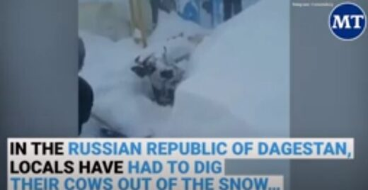 Record snow in Russia