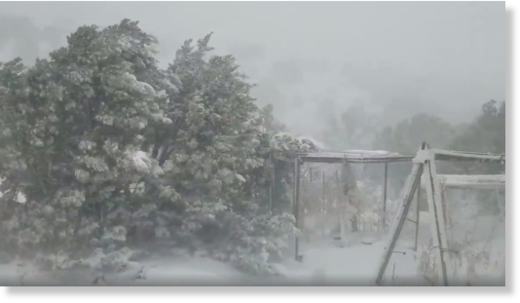 Damaging Winds and Snow Sweep Across Central New Mexico as Severe Storm Hits