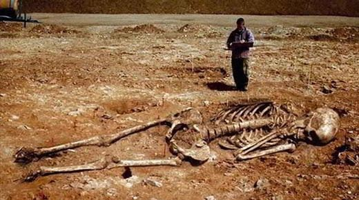 giant_skeleton_smithsonian_con.jpg